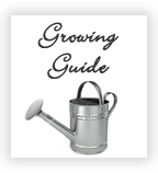 Growing Guide